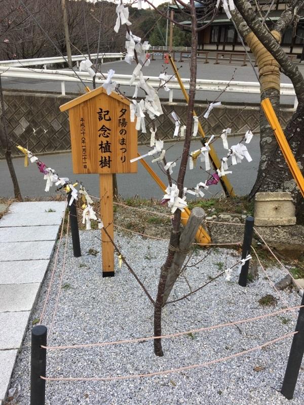 宮地嶽神社の記念植樹