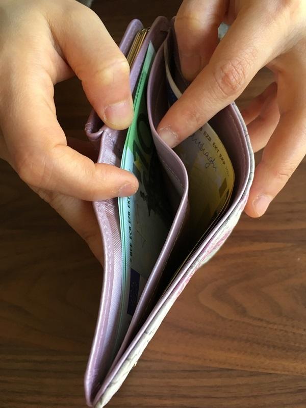 エーテル・AETHERの折り畳み、がま口財布の内装